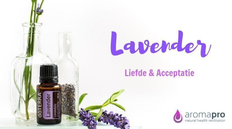 Lavender van doTERRA